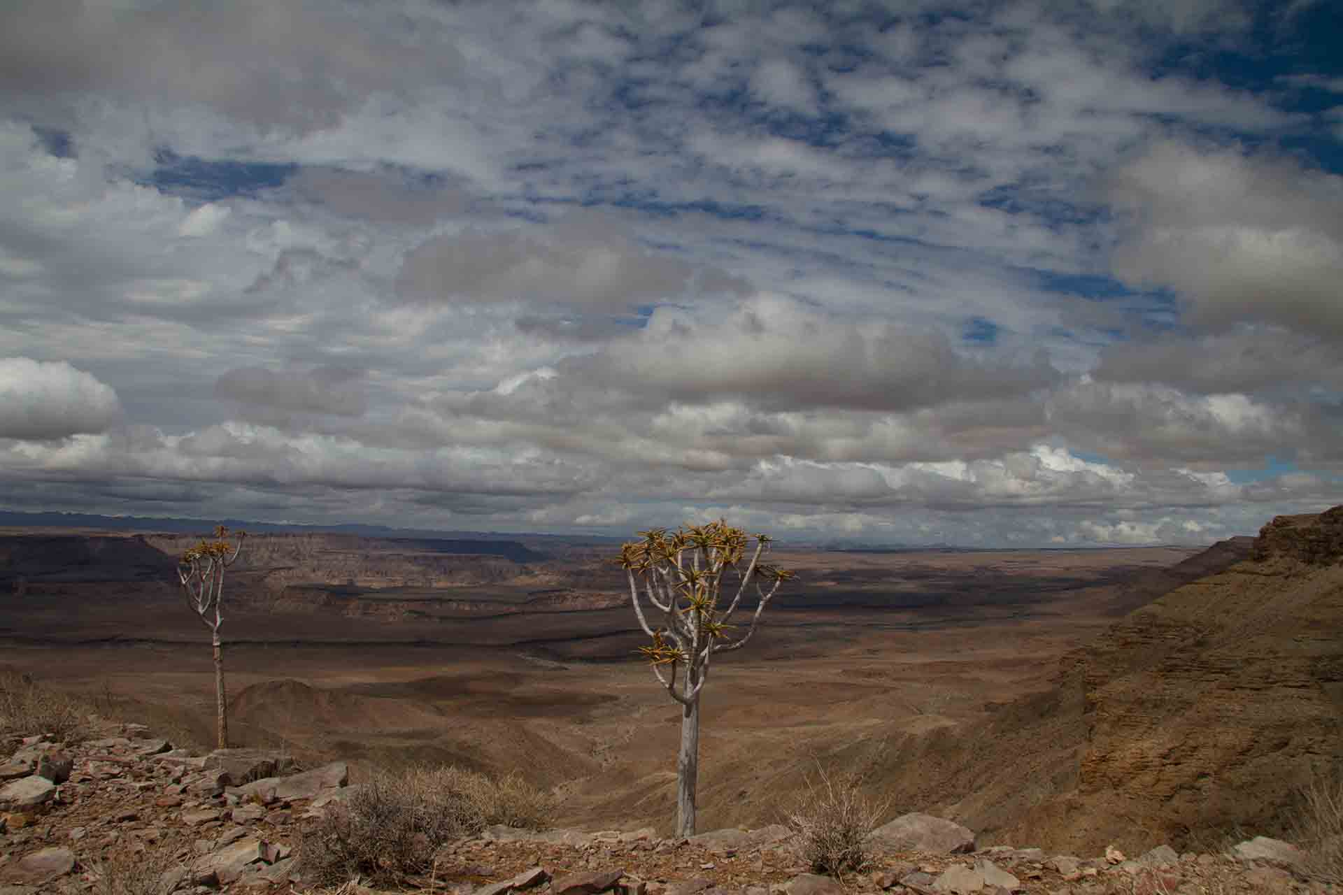 Fish River Canyon - Namibie