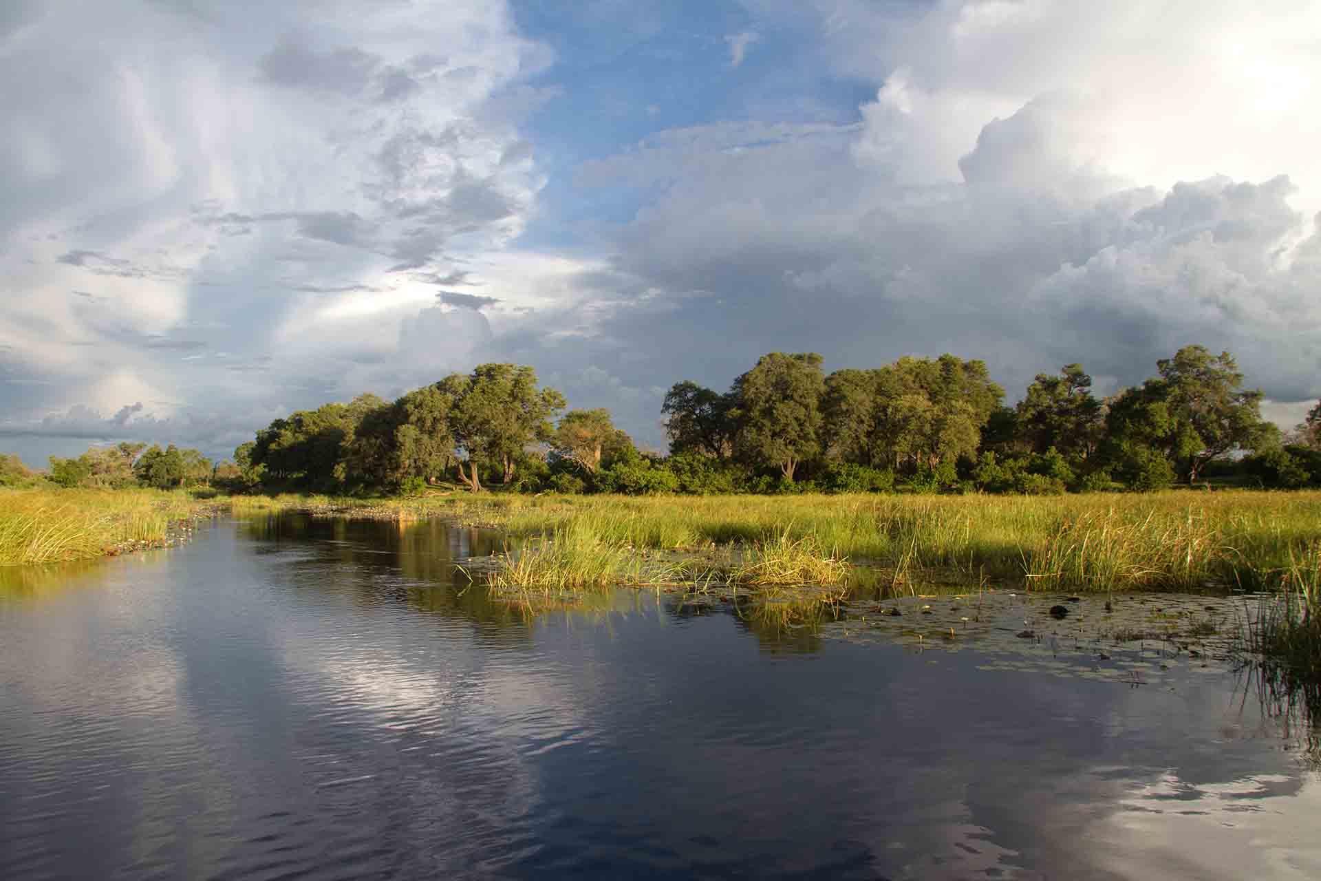 Zambezi - Bande de Caprivi