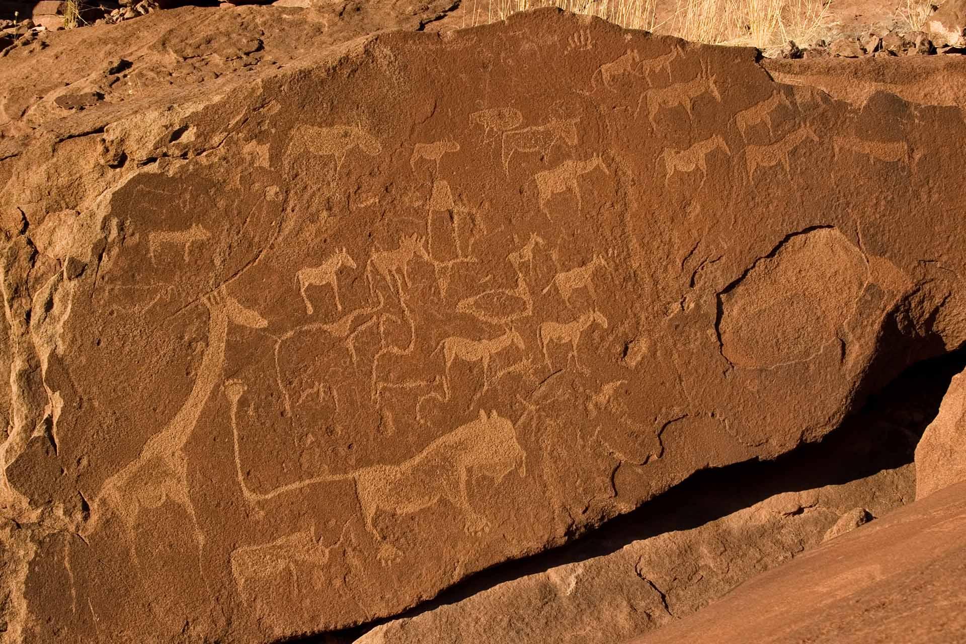 Gravures rupestres - Twyfelfontein