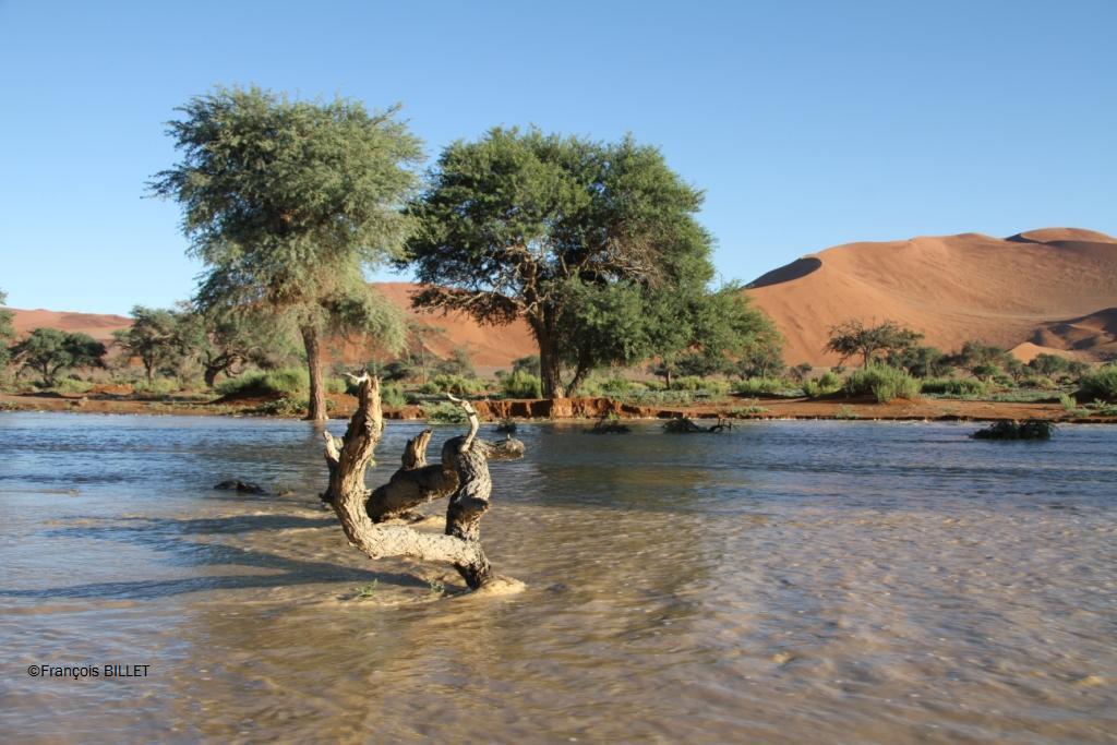 Dunes de Sossusvlei - Desert du Namib